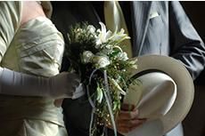 ibot-matrimoni